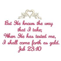 Job 23:10
