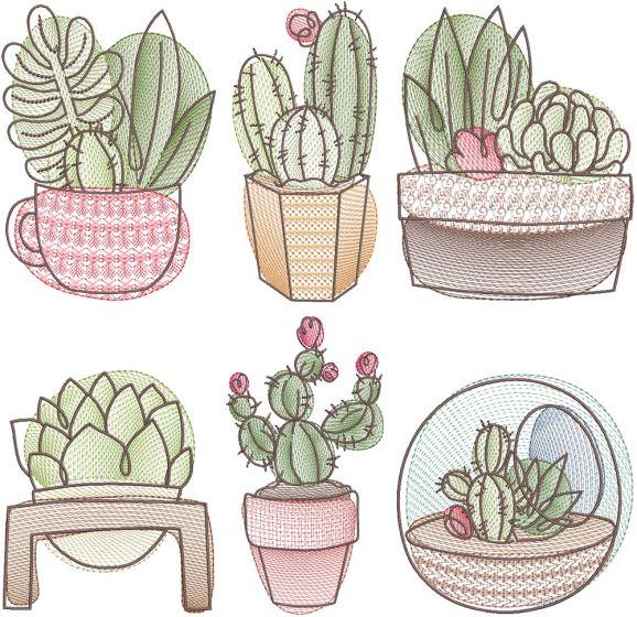 Sketch Succulents Digital Machine Embroidery Designs by JuJu